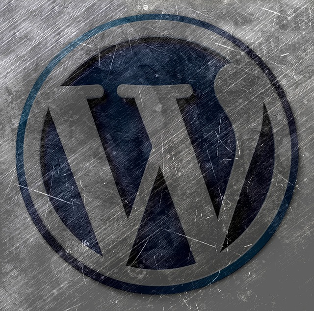 Speed vs. Security: 5 Things to Expect From Your WordPress Host