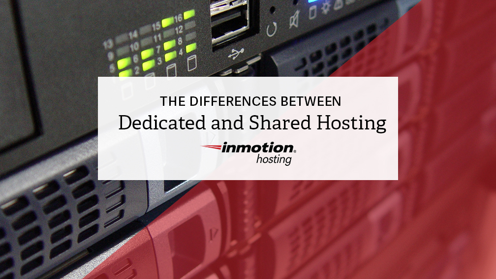 Differences Between Dedicated and Shared Hosting