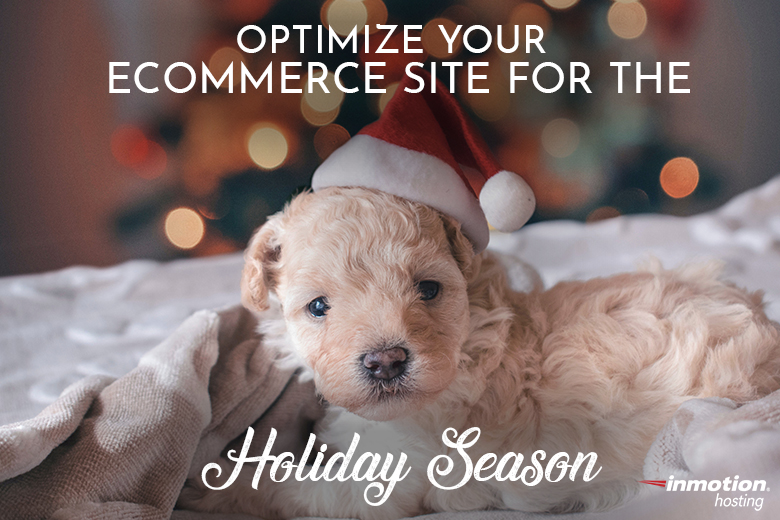 Optimize Your eCommerce Site for the Holiday Season