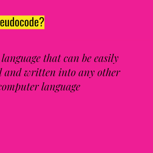What is Pseudocode