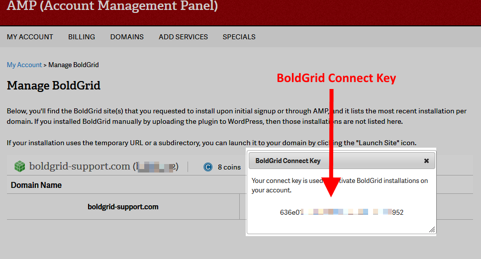 BoldGrid Connect Key Popup.