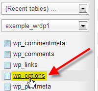 phpMyAdmin select WordPress options table