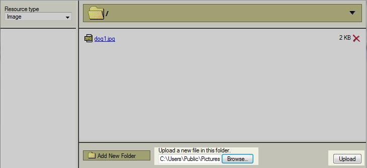 image server browser
