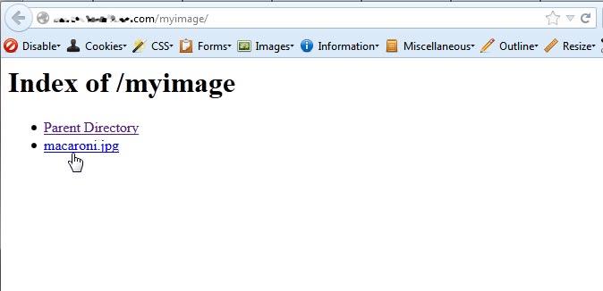 link-to-file-server-2-index-of