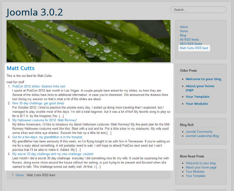 310: Joomla 3 1 RSS Newsfeeds Component Tutorial | InMotion
