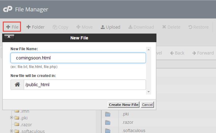 create and name the file