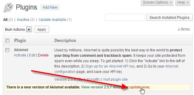 wordpress admin plugins click update now