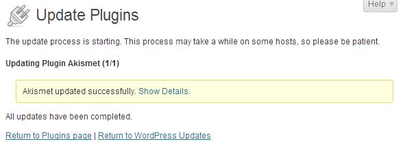 wordpress admin updates plugin update successful
