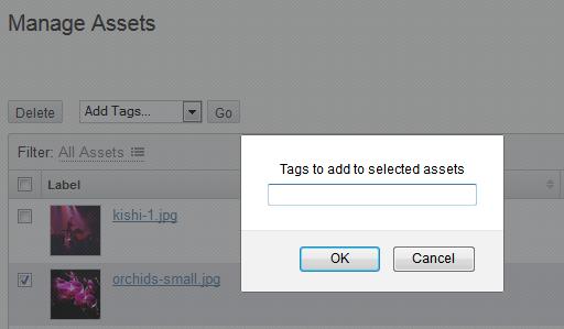 Add tag dialog window