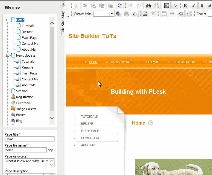 View with teh EWdit section looking normal Internet Explorer Premium Web Builder