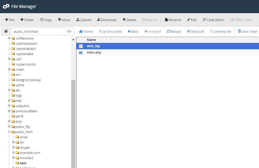 cpanel error log file manager error log