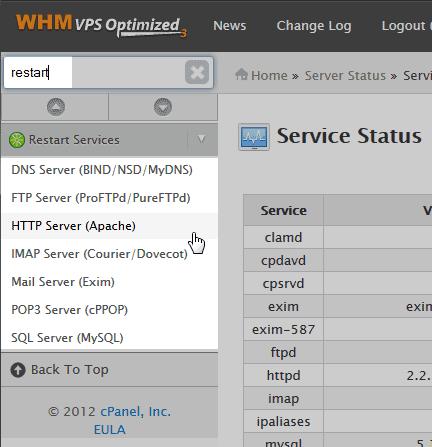 type AMP VPS Restart services