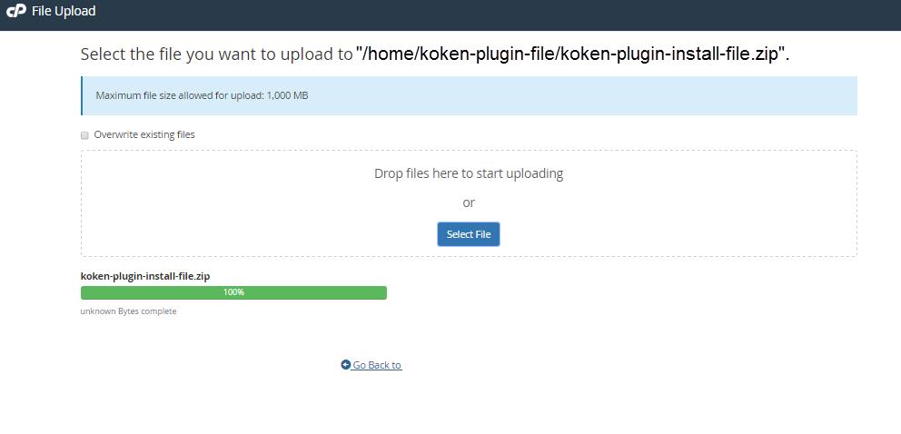 koken upload screen