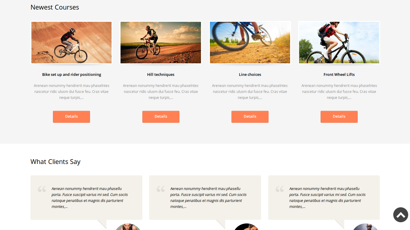 wordpress themes templatemonster biking lookslike2