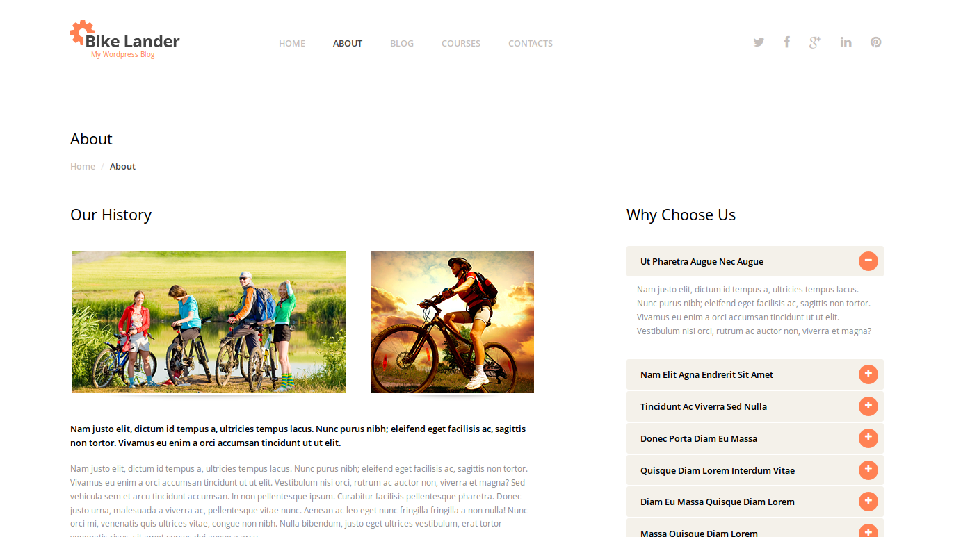 wordpress themes templatemonster biking lookslike4