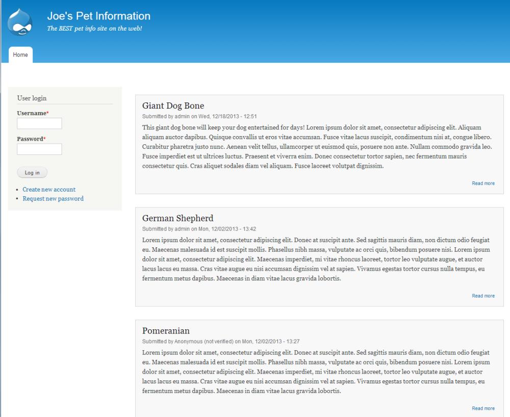 edu Drupal 8 205 change site details 6 front page before