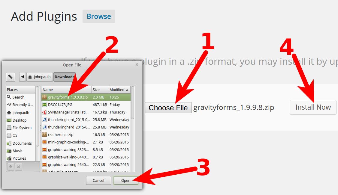 Plugin installation GravityForms Word Press