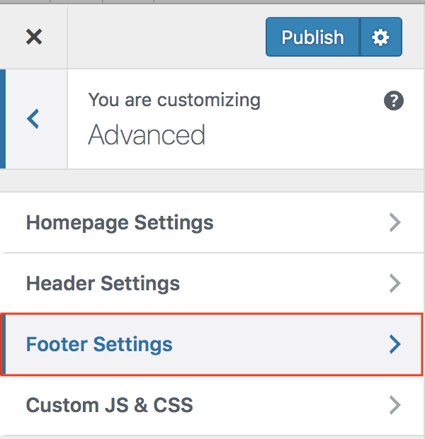 Customizer Advanced Footer Settings menu option highlighted.