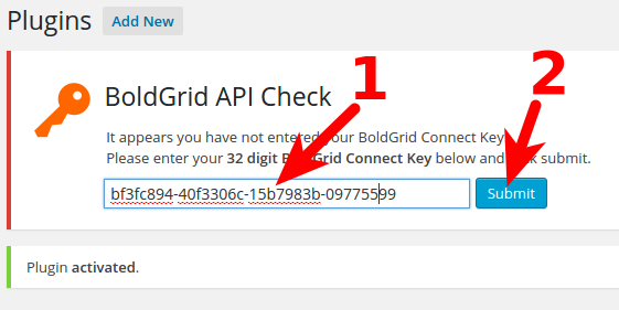 Setup BoldGrid Key in WordPress