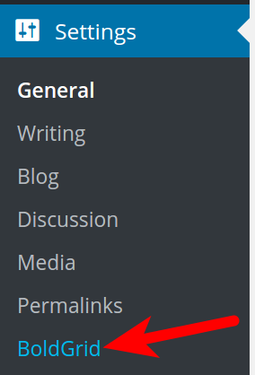 BoldGrid options