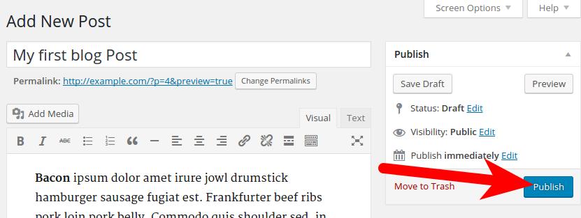 Publishing Post in WordPress