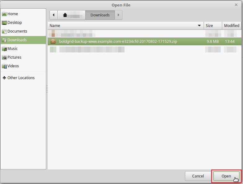 Open Backup File