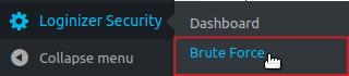 Loginizer Security Brute Force menu option highlighted