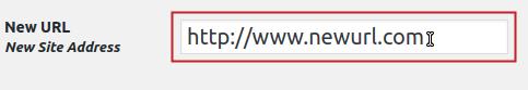 New URL field highlighted