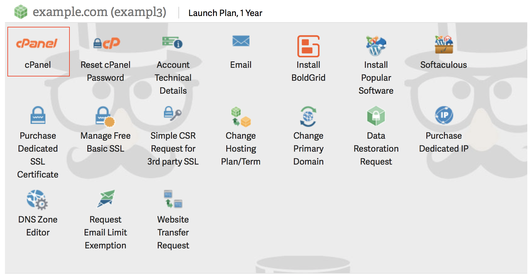 Account Management Panel (AMP) cPanel login icon highlighted.
