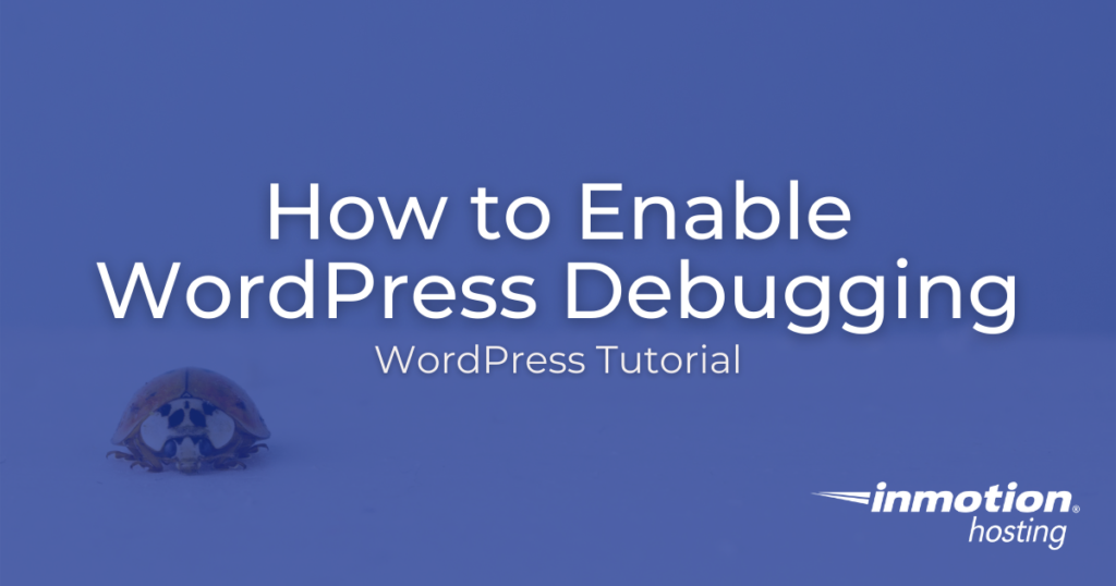 Learn How to Enable WordPress Debugging Mode With WP-CLI and File Manager