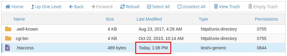 cpanel file manager copy file copied file