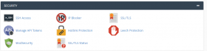 security in cPanel