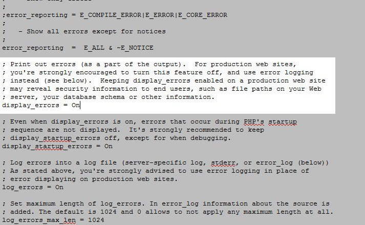 php ini display errors on