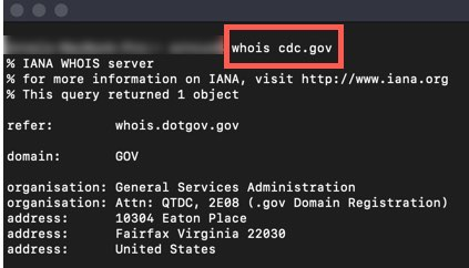 Example of the WHOIS command in a terminal