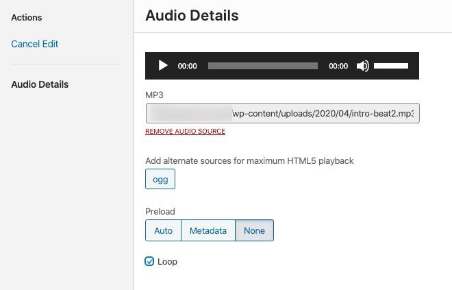 Editing the audio file in WordPress