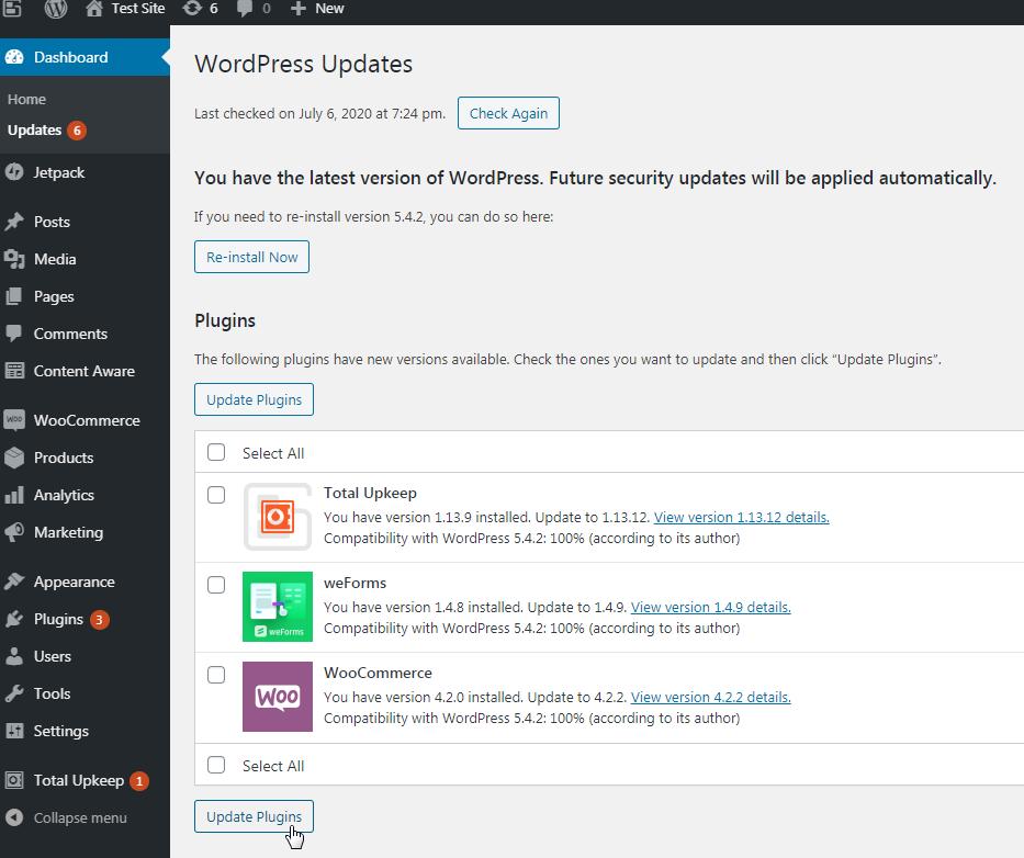 Update plugins from update area in WordPress dashboard.