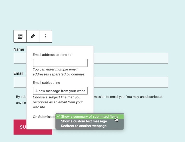 submission options for Newsletter sign-up form