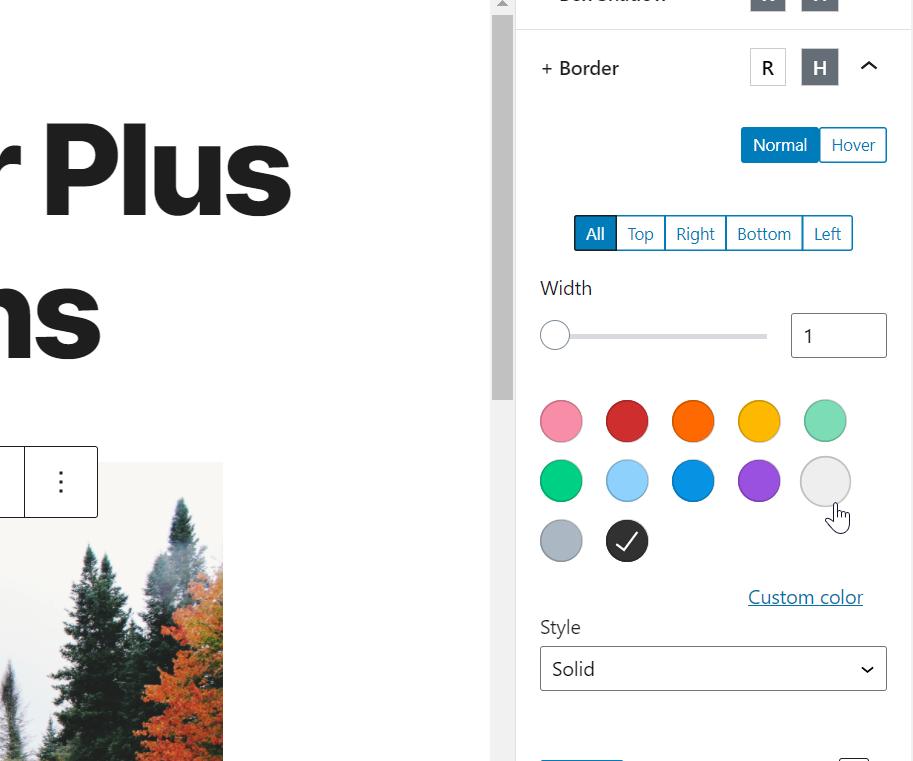 border options for editor plus plugin