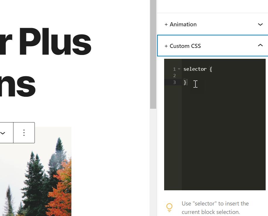 css customization for editor plus plugin
