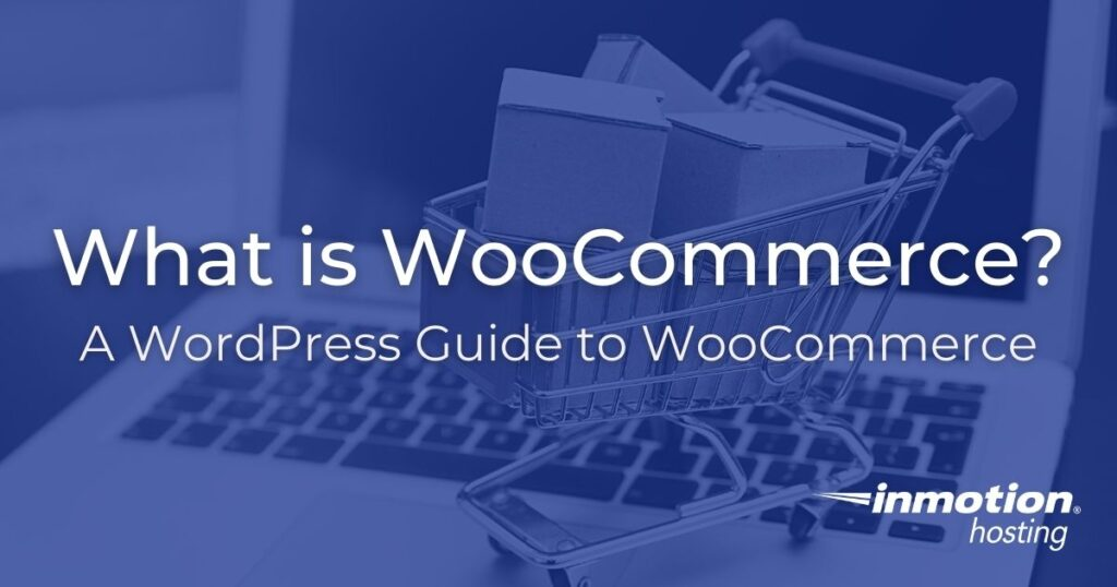 What is WooCommerce? A WordPress Guide to WooCommerce