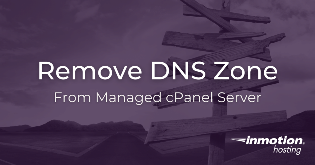 How To Remove DNS Zone From VPS Server 1