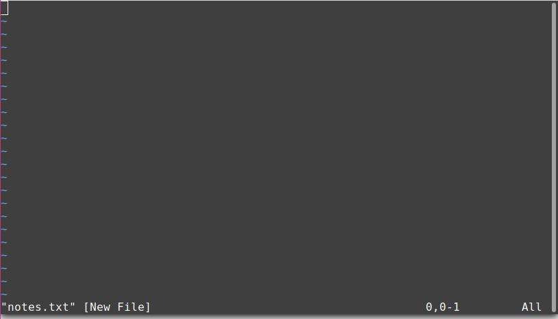Empty text file in Vim