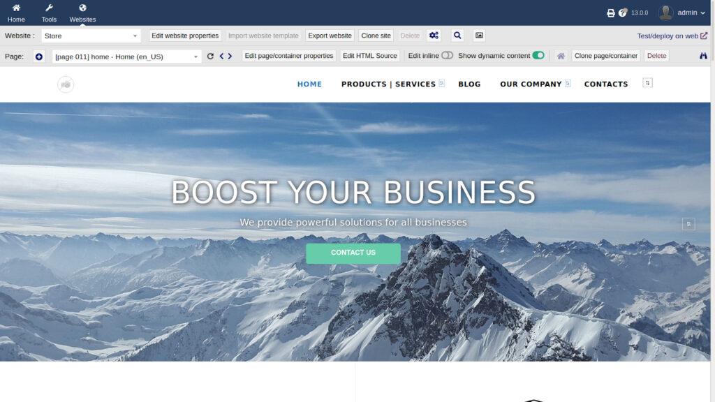 Corporate Website Example in Dolibarr ERP Software