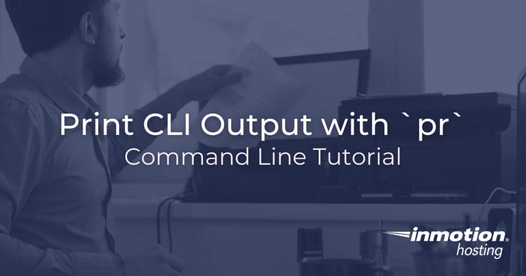 Print cli output with pr