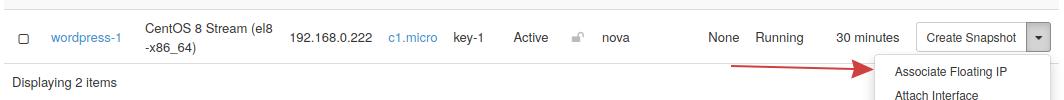 um instance listing floating ip
