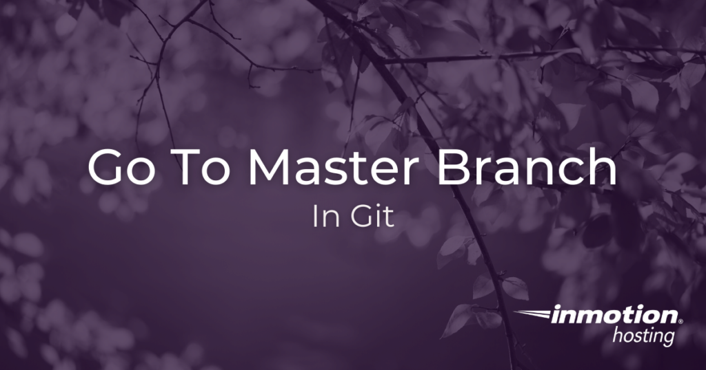 How to go to master branch in git